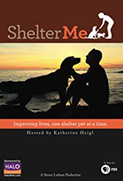 SHELTER ME (2012)