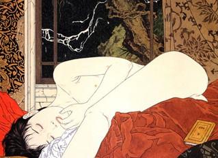 A casa das belas adormecidas,  ou tentando uma brecha na muralha do hermetismo