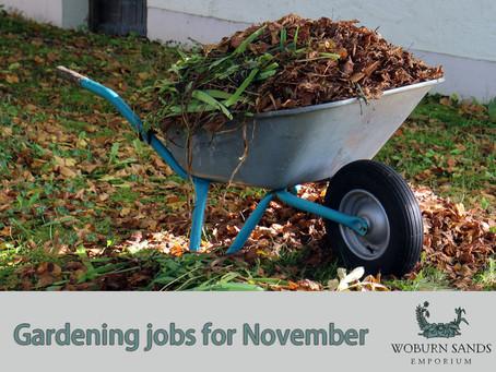 Top Gardening Jobs for November