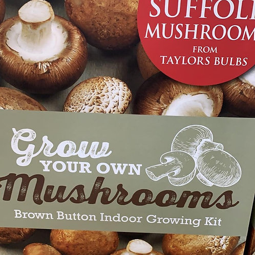 Grow your own Mushrooms brown