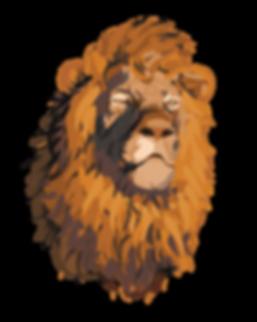 Lion Sketch 4-01.png