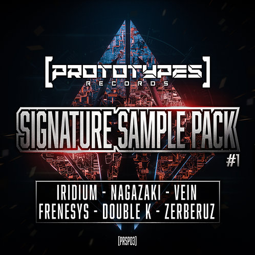 Prototypes Records Signature Sample Pack #01