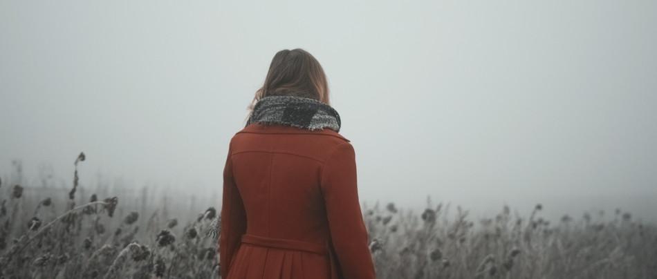 Weinberg im Nebel