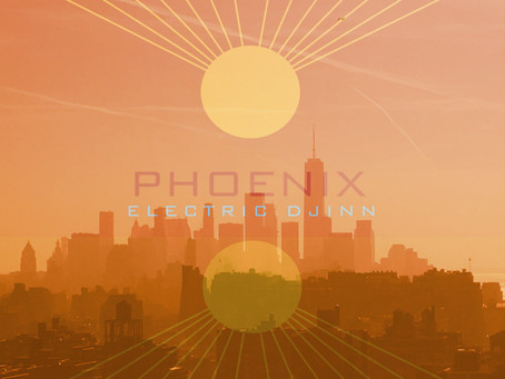 Landing on planet Earth now PHOENIX