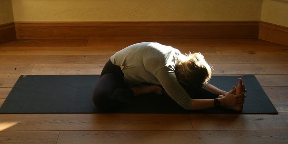 A Morning of Yin Yoga
