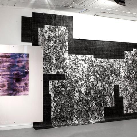 Decoherencias (Exhibición)