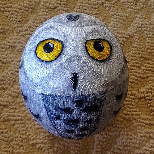 Owl Whitey