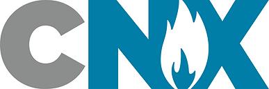 CNX Logo_NO TM.png