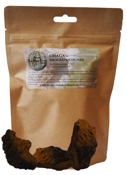 100 Gramm - Chaga Brocken / Chaga chunks