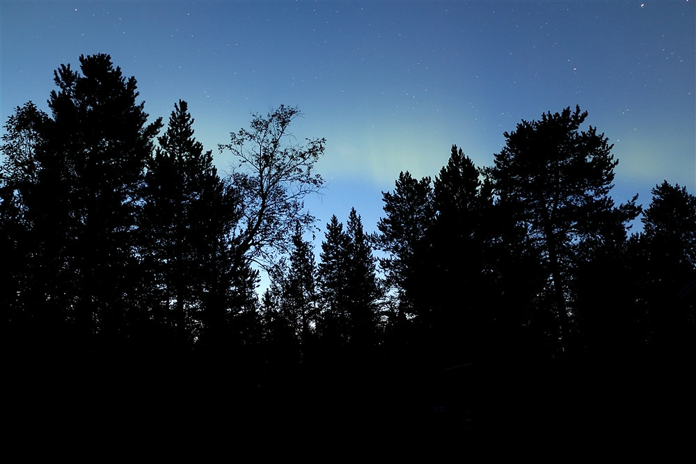001_Polarlichter_290814.jpg
