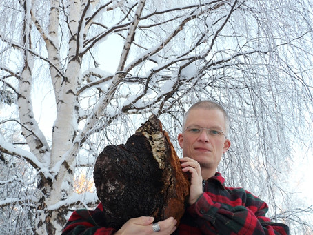 Ein (Riesen-) Ding namens Chaga - A (huge)  thing called Chaga!