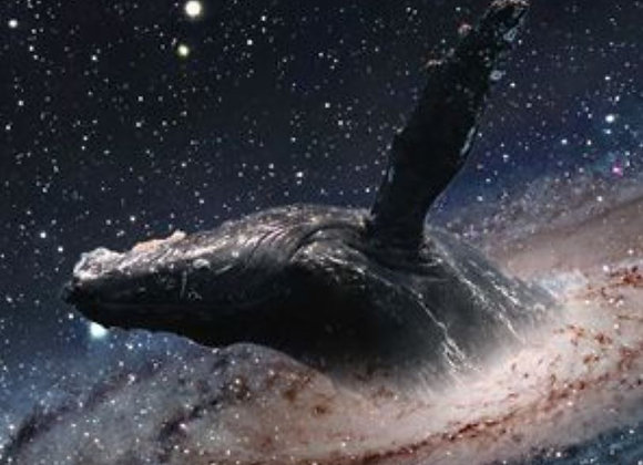 Healing Whales in Space at 432 Hertz