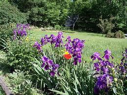 flower+garden+5.jpg