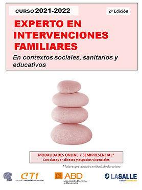 curso EXPERTO EN INTERVENCIONES FAMILIARES.jpg