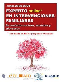curso EXPERTO EN INTERVENCIONES FAMILIAR