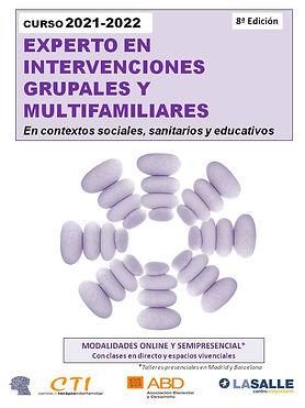 curso EXPERTO EN INTERVENCIONES GRUPALES Y MULTIFAMILIARES.jpg