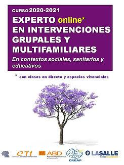curso EXPERTO EN INTERVENCIONES GRUPALES