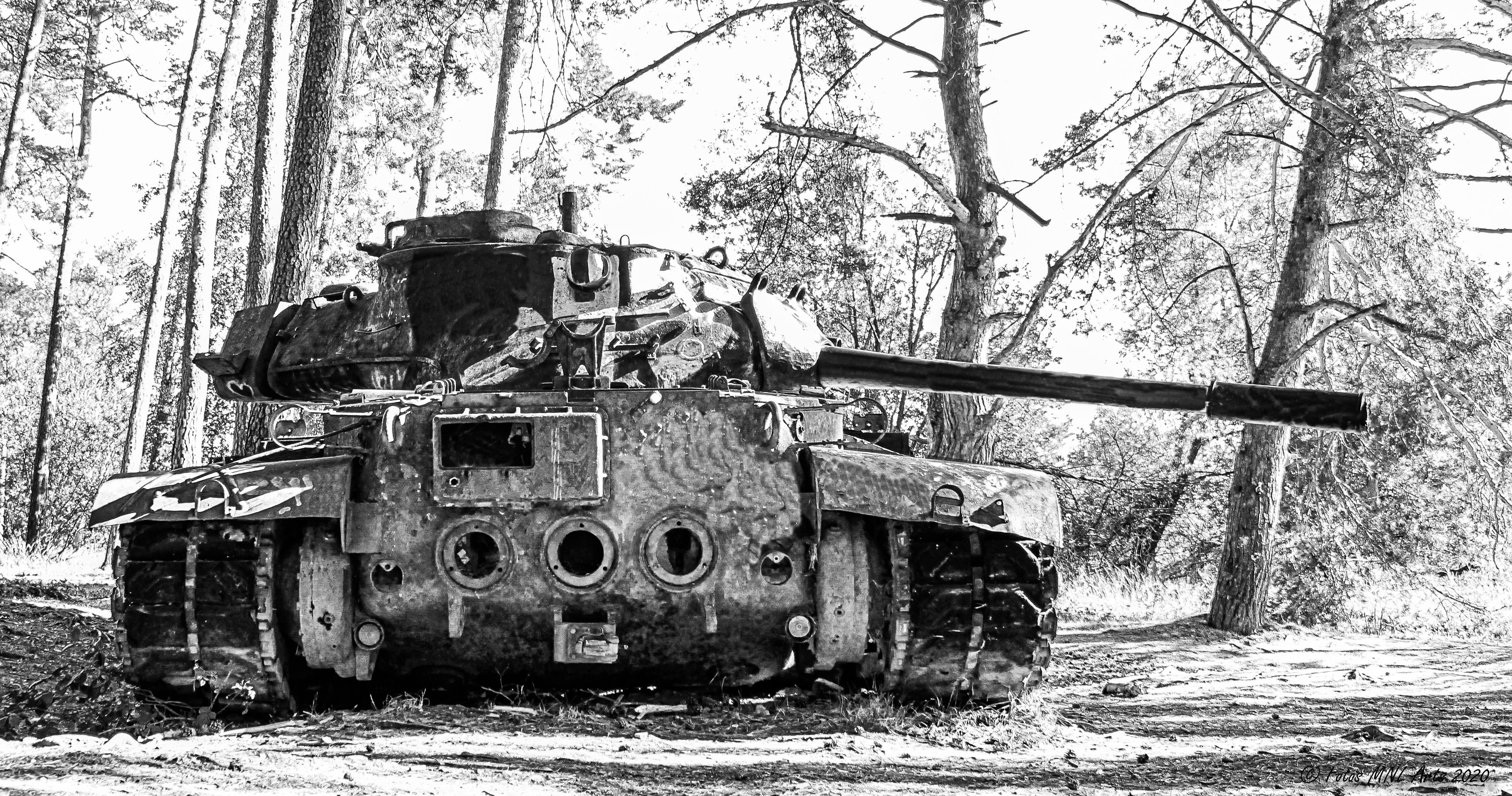 Panzer (2)