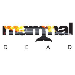Mammal - Dead - 2018