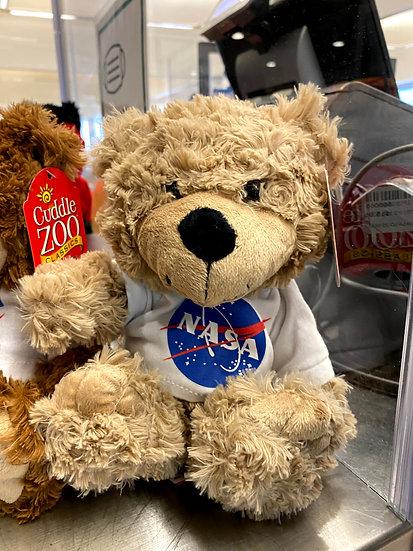 NASA LOGO BEAR