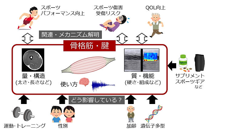 ResearchMap.jpg