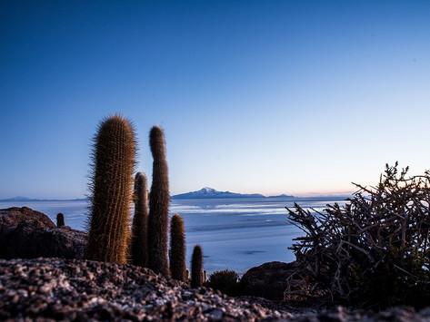 Buongiorno dall'Isla di Incahuasi