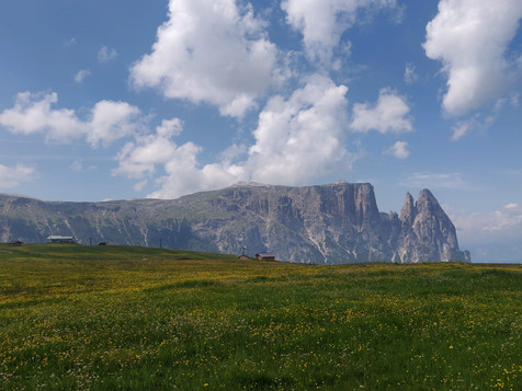 Quattro giorni, d'estate, sull'Alpe di Siusi