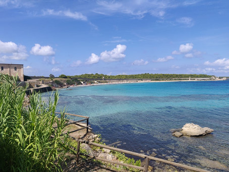 Pianosa, l'isola delle storie
