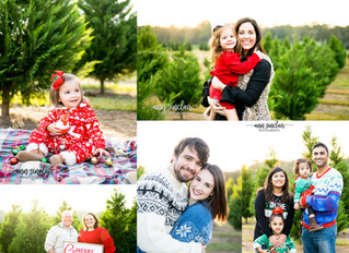 Christmas Minis 2017 | Fish River Trees | Summerdale, Alabama