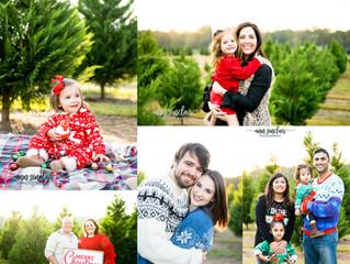 Christmas Minis 2017 | Fish River Trees | Summerdale, Alabama