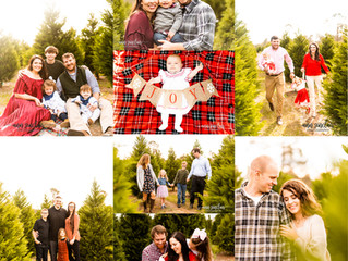 Christmas Minis 2020 | Fish River Christmas Tree Farm | Summerdale, Alabama