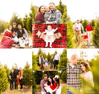 Christmas Minis 2020 | Fish River Christmas Tree Farm | Summerdale, Alabama