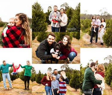 Christmas Minis 2019 | Fish River Christmas Tree Farm | Summerdale, Alabama