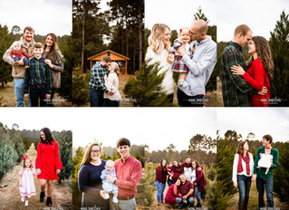 Christmas Minis 2018 | Fish River Christmas Tree Farm | Summerdale, Alabama