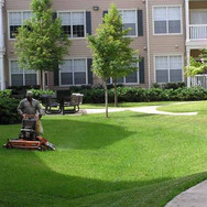 Dedicated Landscaping pic of one guy mow