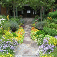 Dedicated Landscaping pic of floral with