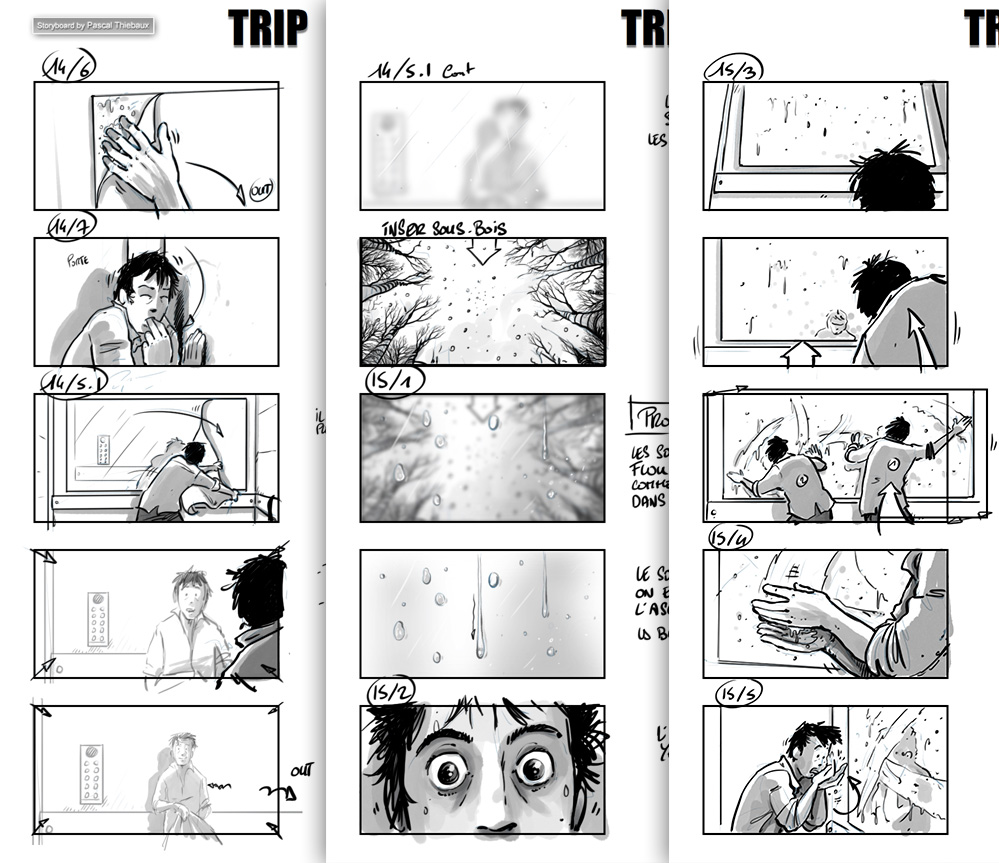 Storyboard TRIP