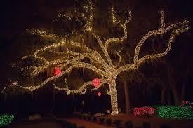 fes of lights