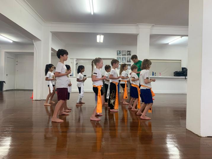 Kids Kung Fu Tigers Form
