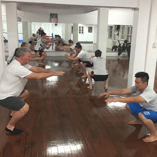 IWKA Brisbane Wing Chun Session.png
