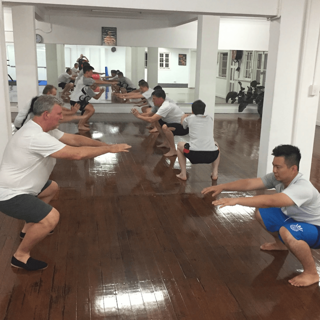 IWKA Brisbane Wing Chun Session.png