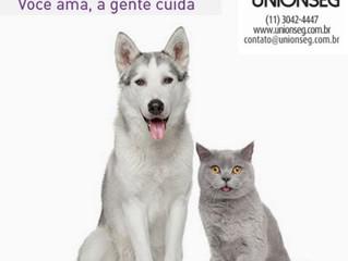 Dr. Pet, Plano de Saúde Animal