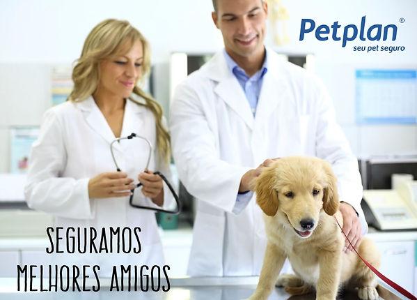 Plano de Saúde Animal, Seguro para cães, Seguro para Gatos, PetPlan, Per Plan, Unionseg, Corretora de Seguros