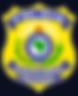 Registro de Carros Roubados - UNIONSEG