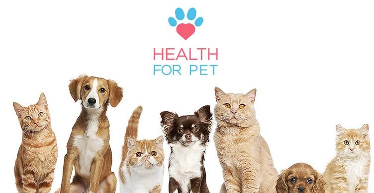 plano de saúde animal, health for pet, plano de saúde pet, plano de saude animal porto seguro, unionseg, corretora de seguros