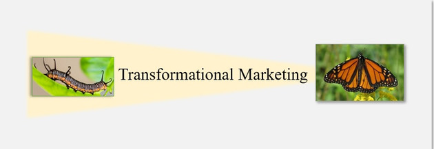 Transformational vs. Marginal Change in Education Marketing