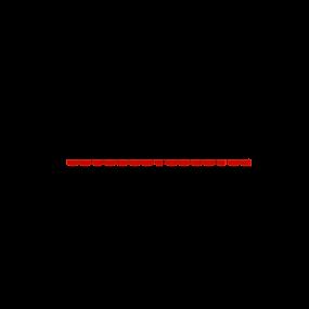 C & H Bus Lines Logo.png