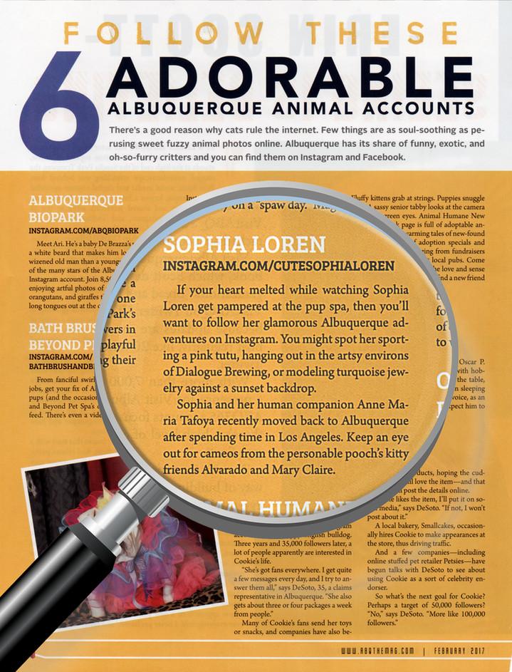 Cute Sophia Loren Featured in Albuquerque The Magazine