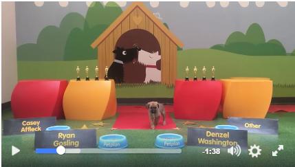 Petplan's Pup-nosticators