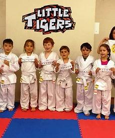 tiger stripes Monday.jpg